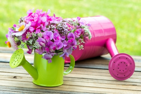 Pink garden flowers in a small watering can Standard-Bild