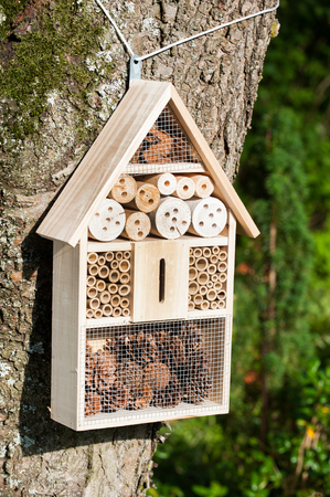 hibernate: Insect hotel on a tree Stock Photo