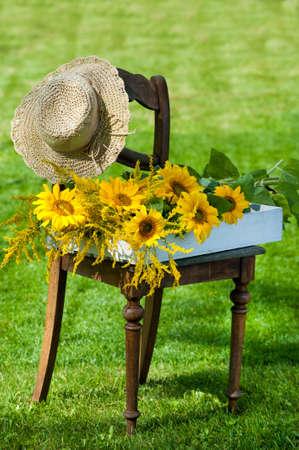 idyll: Garden idyll with sunflowers on a chair