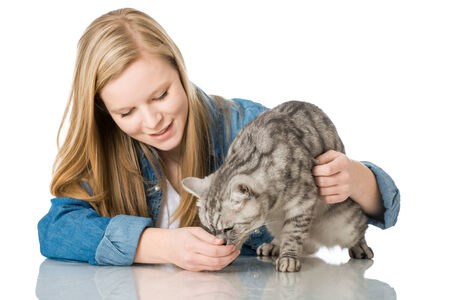 Girl caressing cat isolated on white Stock Photo