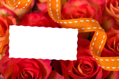 blumen: Sign with roses Stock Photo