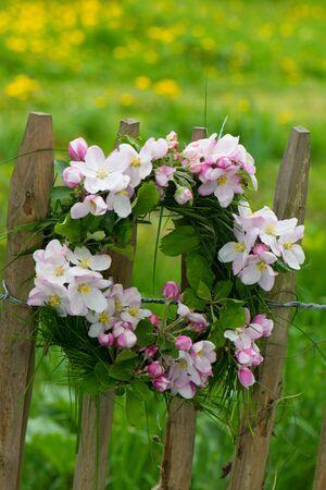 Apple blossom wreath on a garden fence