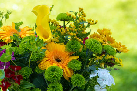 Colorful summer flower bouquet with nature background