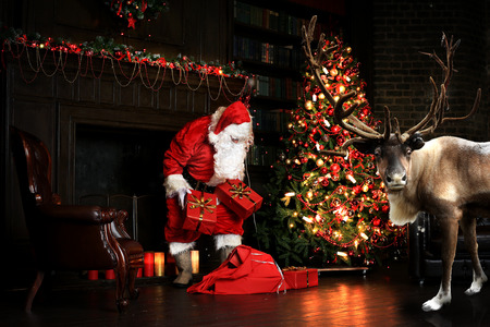 Christmas night, Santa Claus puts gifts under the tree Banco de Imagens