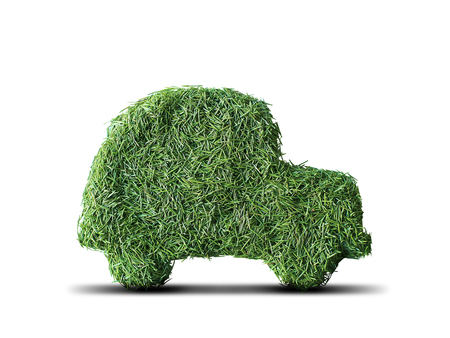 Little green eco car with spruce needles