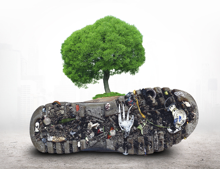Theme of ecology