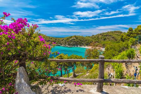livorno: Wiev of Fetovaia beach, Elba Island, Tuscany, Italy.