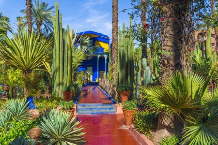 Le Jardin Majorelle, amazing tropical garden in Marrakech, Morocco. Stock Photo