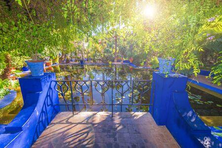 Le Jardin Majorelle, amazing tropical garden in Marrakech, Morocco. Banque d'images