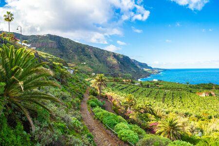 Landscape with North Tenerife coast, Canary island, Spain