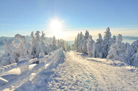 Landscape with ski slope in Poiana Brasov, Romania