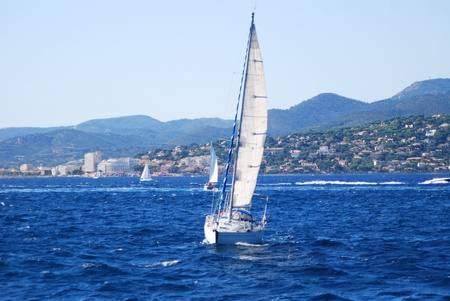 fast boats in Saint Tropez on South of France Riviera  photo