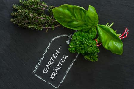 gartenanlage: Herbs