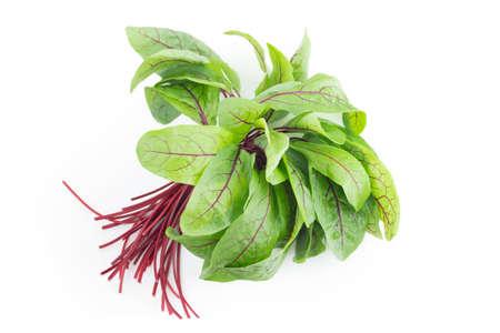 feuilles d'oseille verte fraîche sur la table