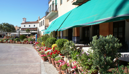 port aventura: Many flowers in pots in park Port Aventura, Salou