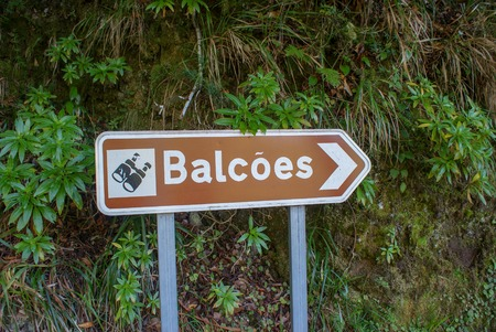 Vereda dos Balcoes goes by levada, its easy and beautiful way in Madeira where you could go without auto