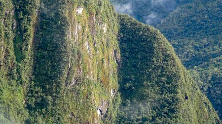 Machu Picchu and its amazing nature. Beautiful mountains and nice lamas, super panoramic views, green and clouds.
