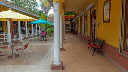 Beautiful tropical city Negril. Caribbean Sea. Jamaican beaches and streets. Bright vegetation
