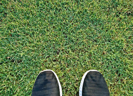 Sport shoes of bloack suede on the grass in park before exercise or running