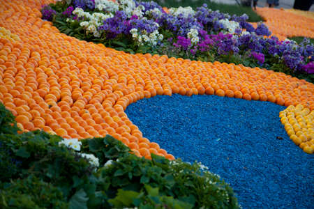 menton: Lemon Festival in Menton, a pattern of lemons and oranges on a lawn