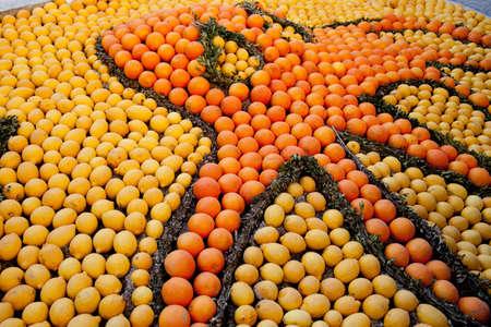 menton: Lemon Festival in Menton, a pattern of lemons and oranges