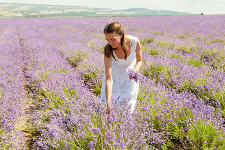 The girl collects lavender