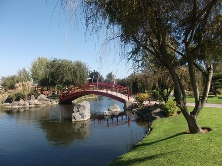 picknic: picknic in a park in La Serena