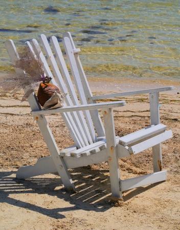 sea ??shell Zeit am Strand Sommerurlaub cchair Standard-Bild