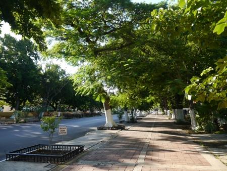 Merida Mexico city view street panorama paseo montejo