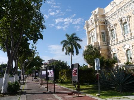 メリダ メキシコ シティ ビュー植民地家パセオ モンテホ