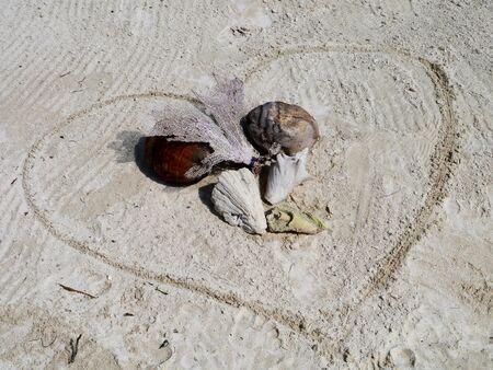 Muschel Zeit am Strand Sommerurlaub Herz
