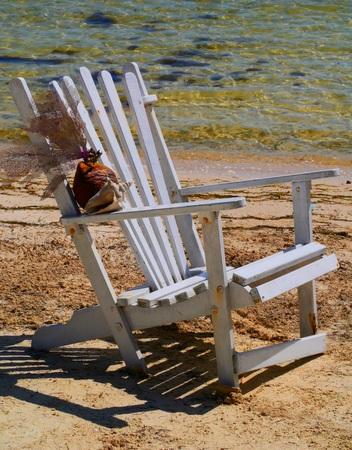 seashell at the beach Holiday summer Mexico 免版税图像