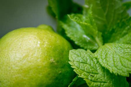 ingridients: Closeup fresh citrus lime with mint, ingridients Stock Photo