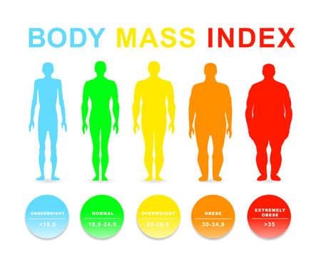 Illustration vectorielle de l'indice de masse corporelle. Silhouettes avec différents degrés d'obésité. EPS 10