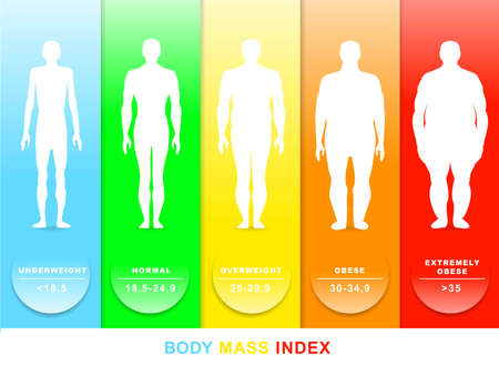 Body mass index vector illustration. Silhouettes with different obesity degrees. EPS 10