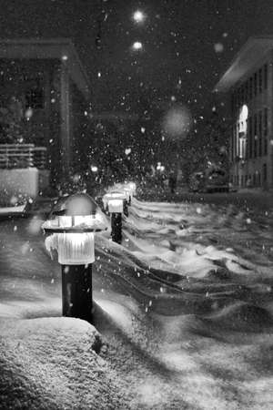 lampposts: Lampposts in snow