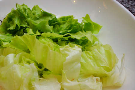 Lettuce salad close up view