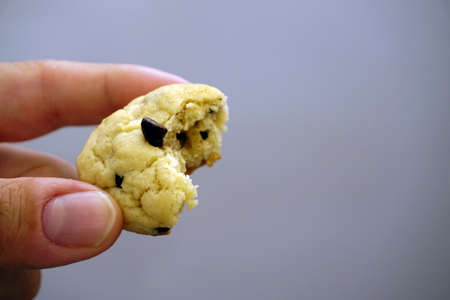 Chocolate chip cookie in hand close up view