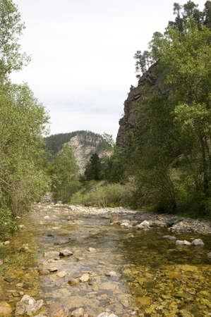 Spearfish Canyon in South Dakota Stock Photo