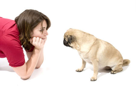 understand: Pug Trying To Understand Owner