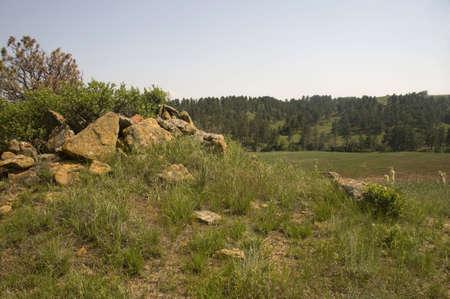 Stenen op Hill