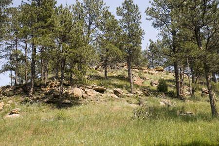 lanscape: Wyoming Lanscape