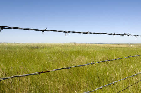 barbed wire and fence: Ranch in Wyoming