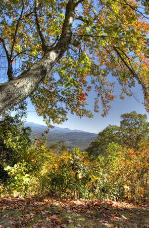HDR of Fall in North Carolina photo