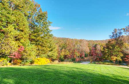 Fall Landscape Stock Photo - 15983764