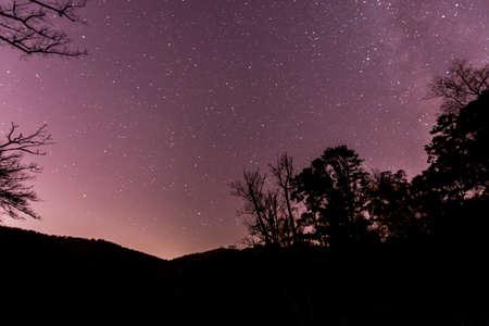 Night Sky in North Carolina Stock Photo - 16297108