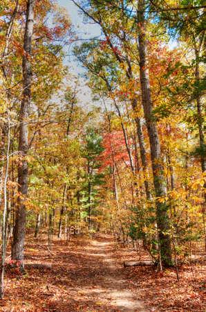 Fall in North Carolina Stock Photo - 16297105