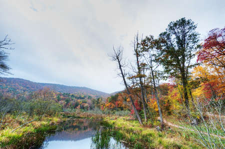 HDR of North Carolina Stock Photo - 16297090