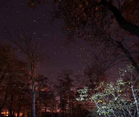 Night Sky in North Carolina Stock Photo - 16693902