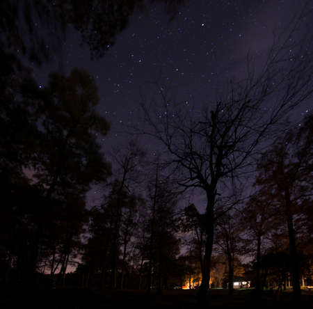 Night Sky in North Carolina Stock Photo - 16693894